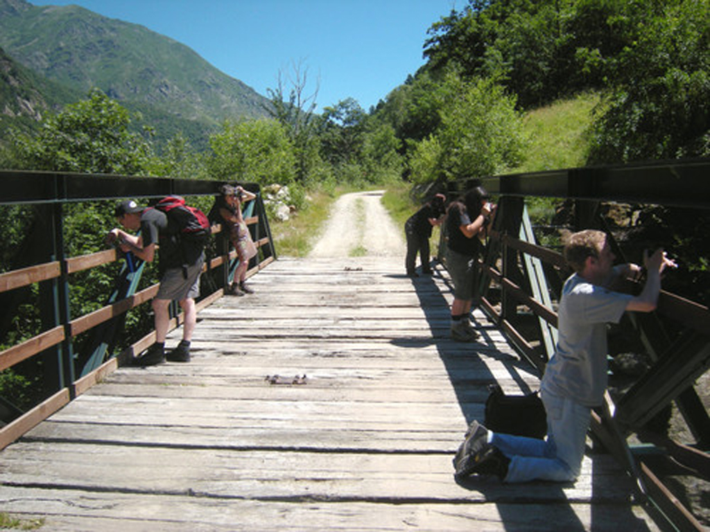 2010-3906 chiara defenders_of_the_bridge PHOTO GUSTAVE PETIT
