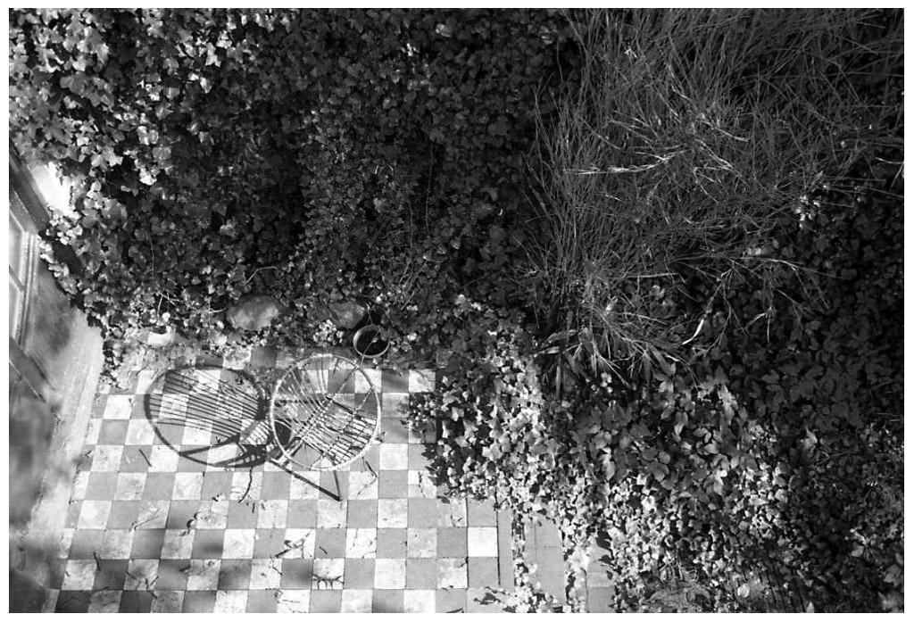 [1985]-070-19 baronielaan FOTO GUSTAVE PETIT