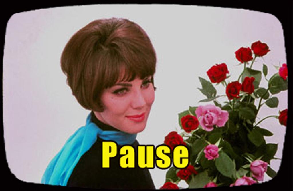 2014 fotolog PAUZE tv-kader omroepster rozen