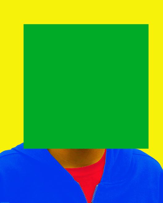 2012 - portret pixel FOTO GUSTAVE PETIT