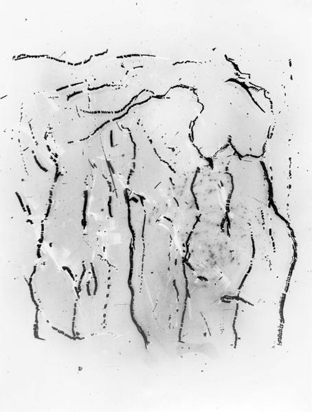 1984-3 FE-006 - no 3 olwen COPYRIGHT GUSTAVE PETIT