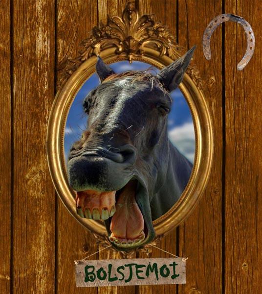 2013 - bolsjemoi BEELD GUSTAVE PETIT