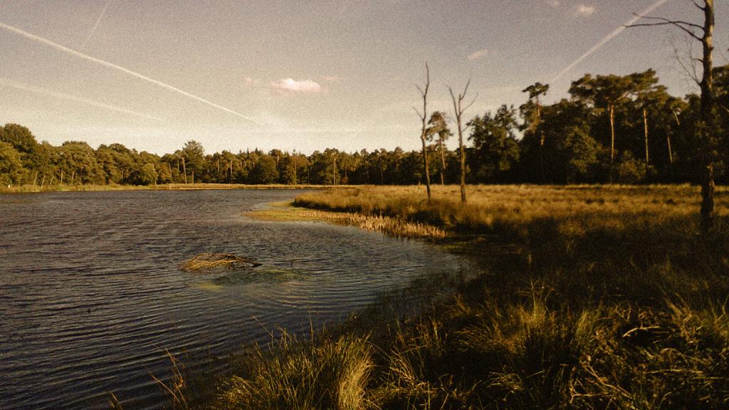 2015 slimfoon water 2 mastbos FOTO GUSTAVE PETIT