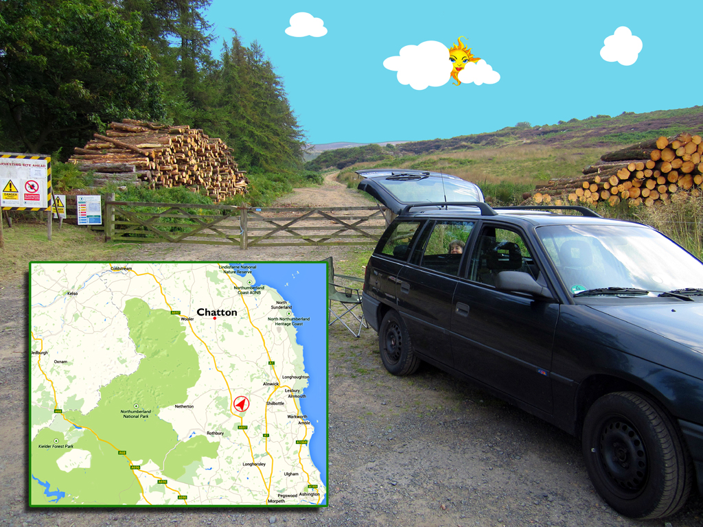 Northumberland timber break PHOTO GUSTAVE PETIT