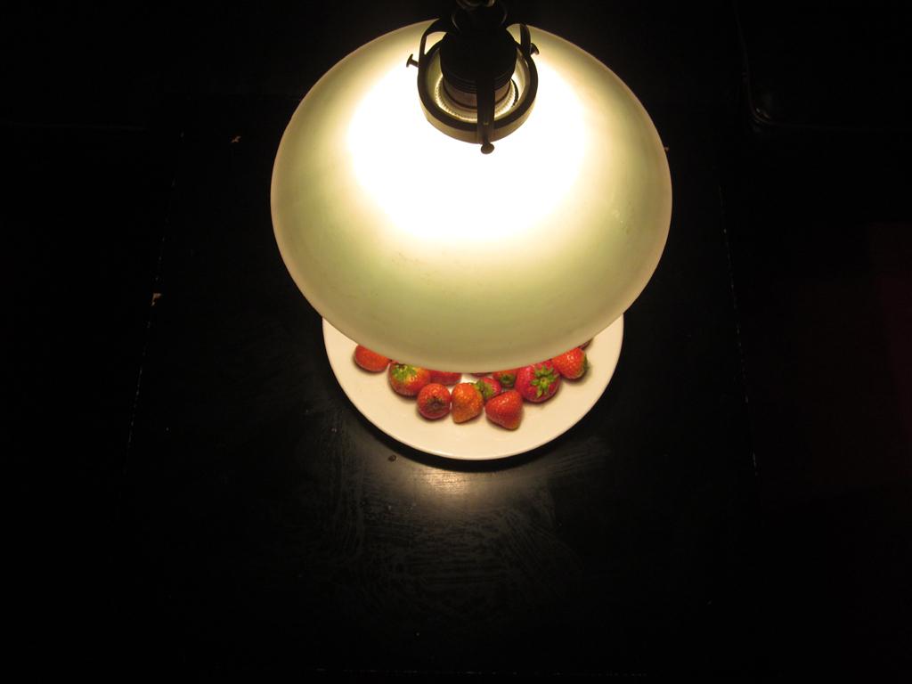 2014-2934 lamp aardbei 03 FOTO GUSTAVE PETIT
